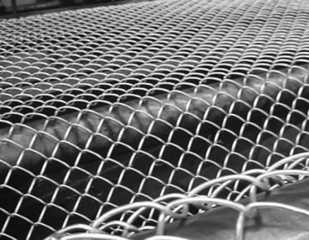 Chain Link 2